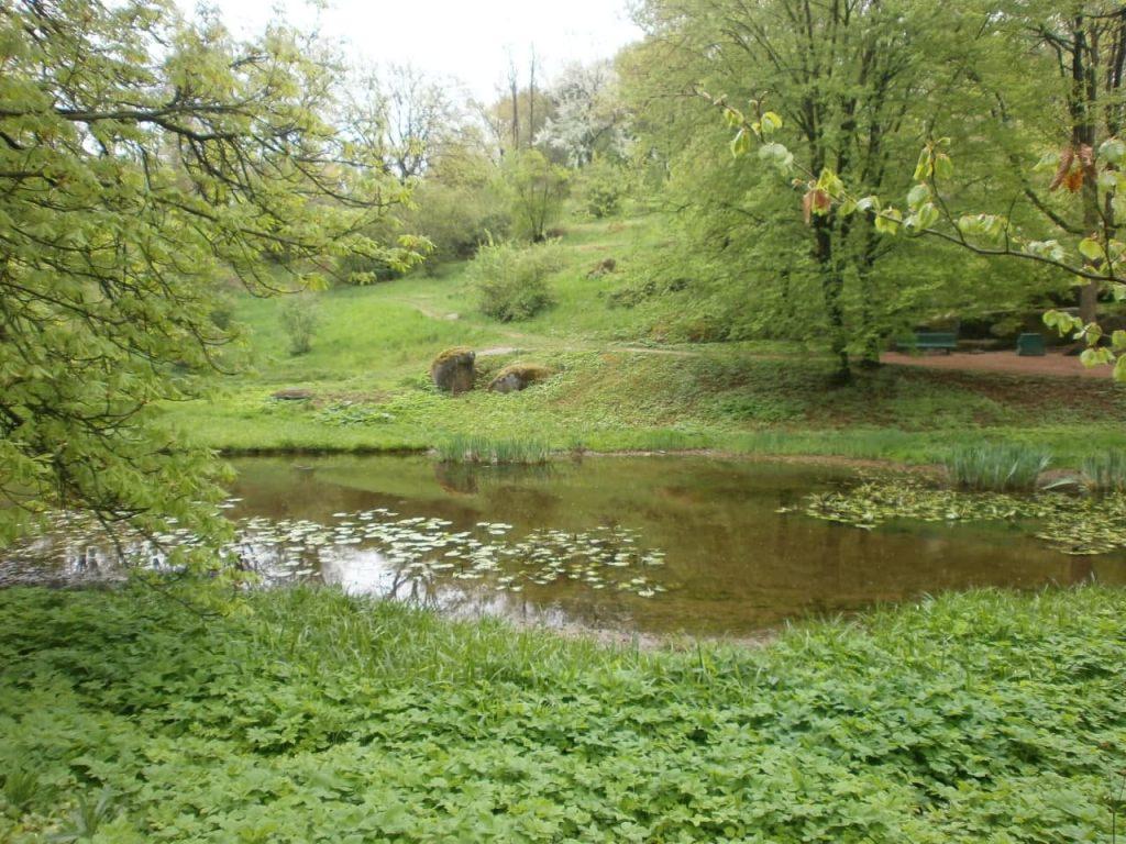 נהרות ואגמים מסוכנים לטבילה