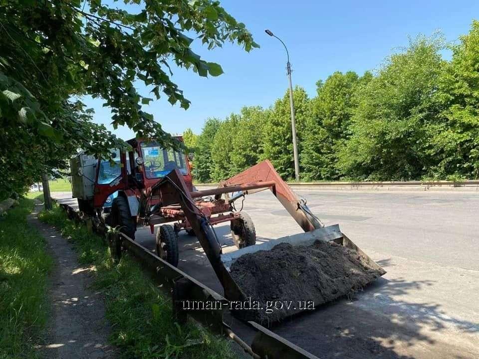 עובדי עיריית אומן בעבודות תחזוקה ושיפור פני העיר